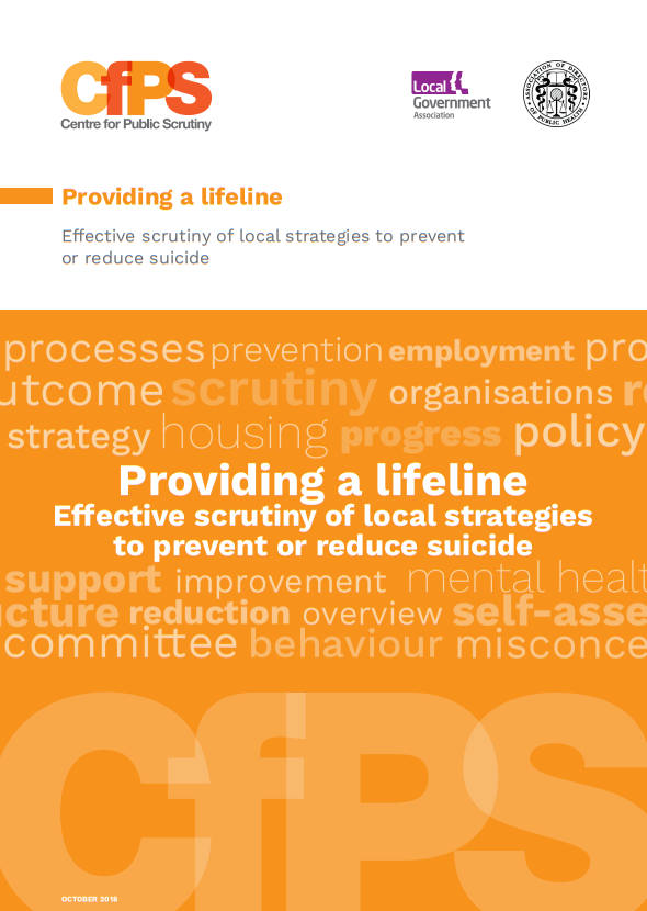 Providing a lifeline Effective scrutiny of local strategies to prevent or reduce suicide