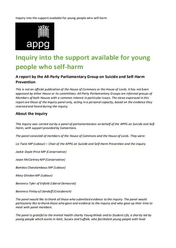 APPG Inquiry Full Report